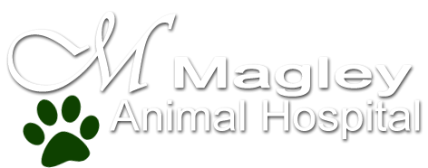 Magley Animal Hospital